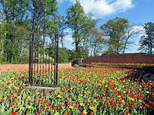 Atlanta Botanical Garden Atlanta Ga Atlanta Botanical Garden