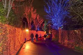 zoo lights portland oregon recycle your old holiday lights at the oregon zoo oregonlive com