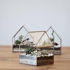resume modernos terrarios suculentas mejores 26 imágenes de terrarios zöld en pinterest terrarios