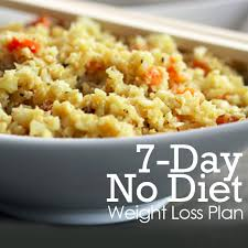 day no diet weight loss plan