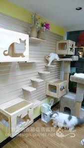 Wall Shelves For Cats Cat Tree Plans In Space Outta Control Cat Shelves Cat Tree