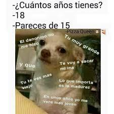Memes De Chihuahua - timeline photos facebook