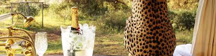 in the press the luxury safari company