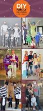 Unique Family Halloween Costume Ideas With Baby by 336 Best Diy Halloween Costumes Images On Pinterest Celebrity