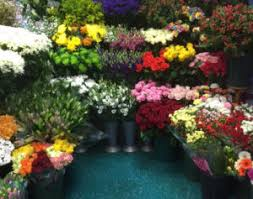 just flowers florist just flowers gifts florist flower delivery in haltwhistle