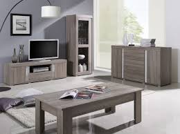 deco salon gris et taupe indogate com salon oriental moderne blanc