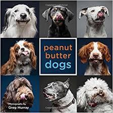 dog peanut butter peanut butter dogs 9781423646655 greg murray books
