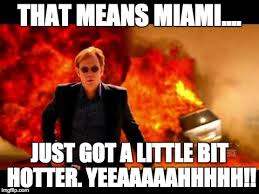 Horatio Caine Meme - image tagged in horatio caine burn imgflip