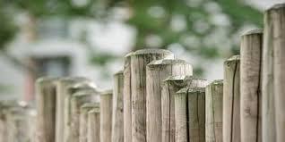 cloture de jardin pas cher clôture pvc grillage aluminium palissade bois pas cher sainthimat