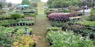 rutgers gardens spring flower fair