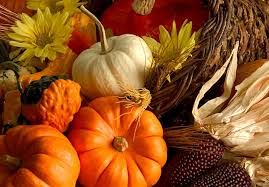 places open on thanksgiving 5 widescreen wallpaper listtoday