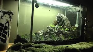 amano aquascape takashi amano aquascape beemedia