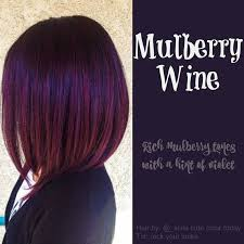 purple hair color formula red purple hair color formula best hair style 2017