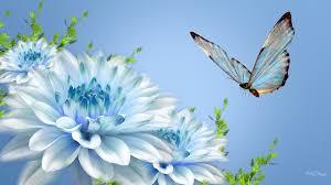 flower blues blue flowers butterfly firefox persona summer