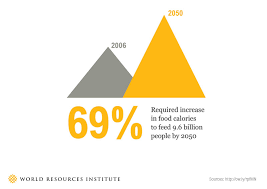 Water Challenge Explained The Global Food Challenge Explained In 18 Graphics World