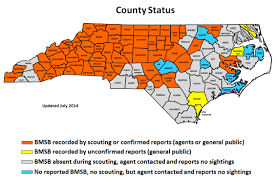 County Map Of North Carolina Brown Marmorated Stink Bug Found At Damaging Levels In Cleveland