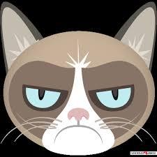 Grump Cat Meme Generator - download grumpy cat meme generator android games apk 3116222