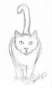 pencil sketch of cat daily cat sketches pinterest sketches