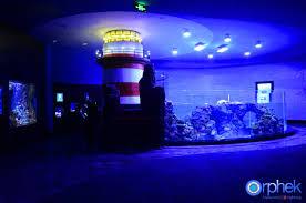 Aquarium Led Light Aquarium Led Lighting Photos Reef And Planted Aquarium Gallery Orphek