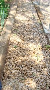free natural wood chips for landscaping 3 steps