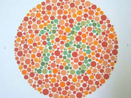 Red Orange Color Blind Test Can You Pass A Color Blind Test