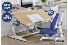 Kid Station Computer Desk by Intelligent Kids Study Station