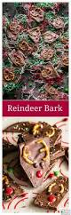 559 best christmas images on pinterest christmas recipes
