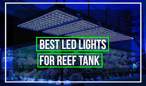 led aquarium lights for reef tanks best led lights for reef tank of 2018 trusted reviews buyer s guide