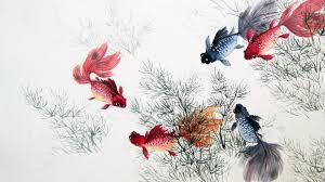1920x1080 cute chinese fishes u0026 plants desktop pc and mac wallpaper