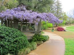 shinzen japanese garden fresno ca top tips before you go with
