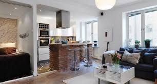 1 Room Apartment Design Living Room Kitchen Living Rooms Wonderful Sophisticated And