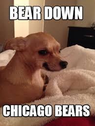 Chicago Bears Memes - meme creator bear down chicago bears meme generator at
