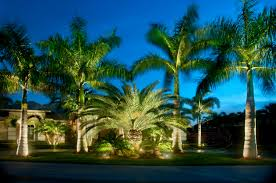 Malibu Patio Lights by Low Voltage Lighting Landscape Led Lighting Tru Landscape Services