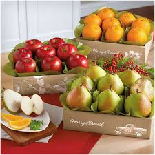 fruit gifts by mail 38 unique gift baskets that don t dodo burd