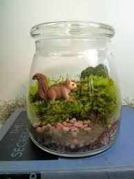 19 best terrariums images on pinterest moss terrarium