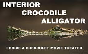 Alligator Meme - interior crocodile alligator by youoweadam on deviantart