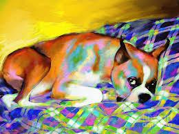 boxer dog art cute boxer dog portrait painting painting by svetlana novikova