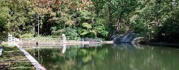 Natural Swimming Pool Highlands Natural Swimming Pool Ringwood New Jersey