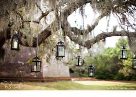 Outdoor Hanging Lights For Trees 17 Outdoor Lighting Ideas For The Garden Scattered Thoughts Of