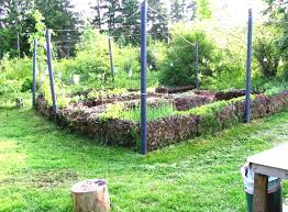 Small Kitchen Garden Ideas Triyae Com U003d Backyard Vegetable Garden Ideas For Small Yards