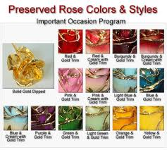 gold dipped roses 5 gold roses for important occasions gold roses 24kt gold gold