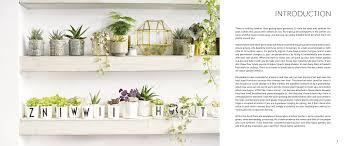my tiny indoor garden houseplant heroes and terrific terrariums