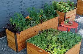 urban gardening vegetables in planters gardener u0027s supply