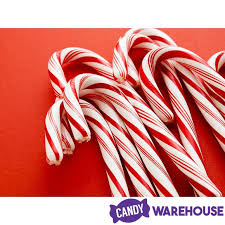 where to buy candy canes bob s traditional white peppermint candy canes 96