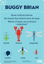 69 best preschool theme insects bugs u0026 other creepy crawlies