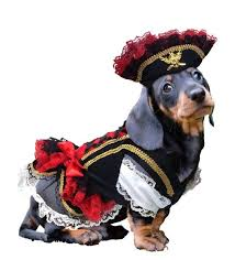 Pet Halloween Costumes Dog Costumes Dog Halloween Costume Ideas U0026 Styles Funnyfur Com