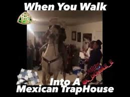 Mexican Thanksgiving Meme - when you walk into a mexican trap house vine youtube