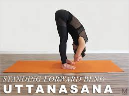 yoga thanksgiving point yoga classes and private appointments in san francisco maiden