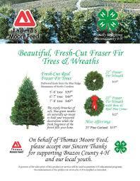 order christmas trees christmas lights decoration