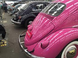 punch buggy car with eyelashes pink lady bug vw pinterest pink lady lady bugs and lady bug